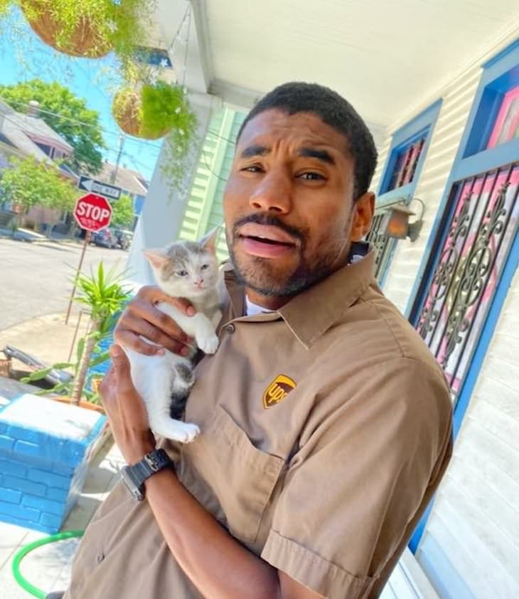 UPS Driver Documents Every Cute Pet He Meets kitten