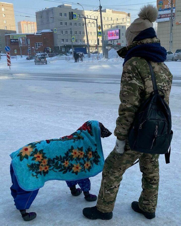 Winter Season Russia, Siberia