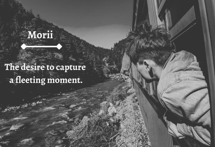 Unusual Travel Words,Morii