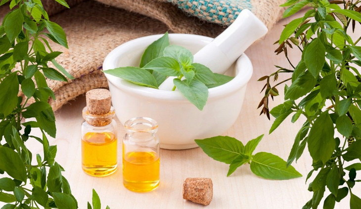 Essential Oils & the Immune System essential oils and plants
