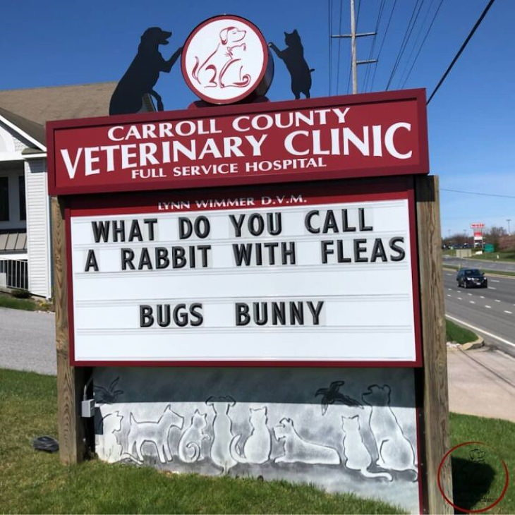 Carroll County Vet Clinic Signs