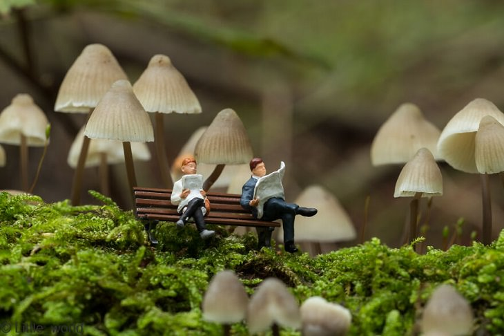 Miniature People, Reading a Book