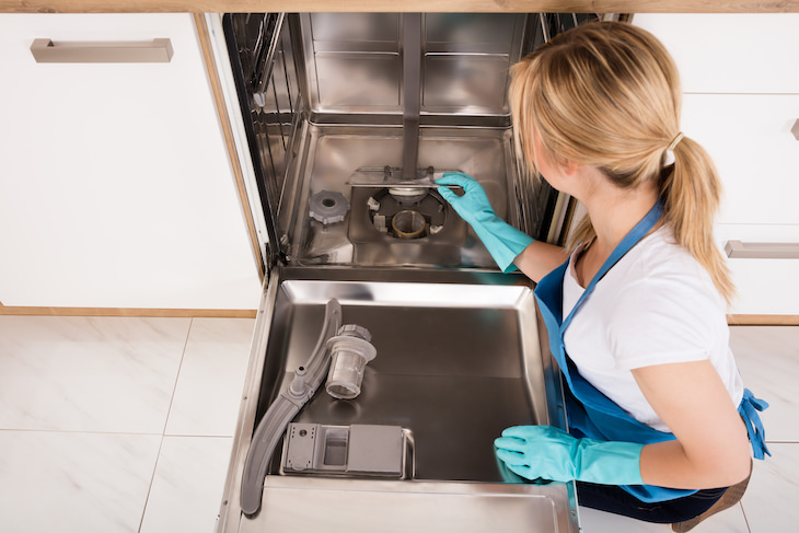 How to Remove Hard Water Stains From Different Surfaces, woman cleaning dishwasher