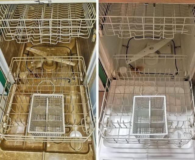 Cleaning Before and After Photos dishwasher
