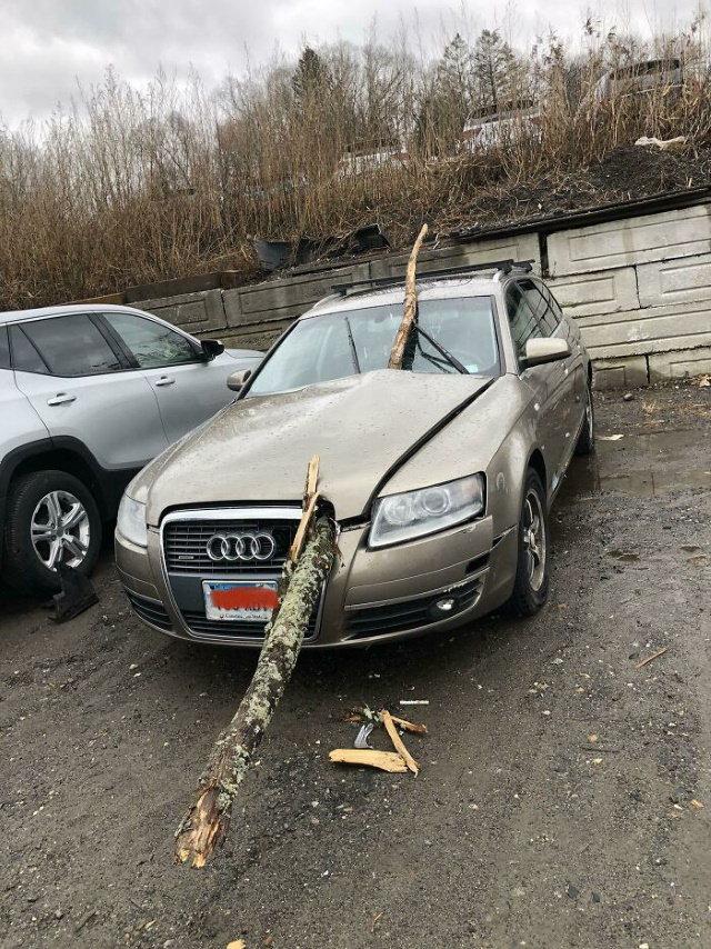 Car Repair tree in car