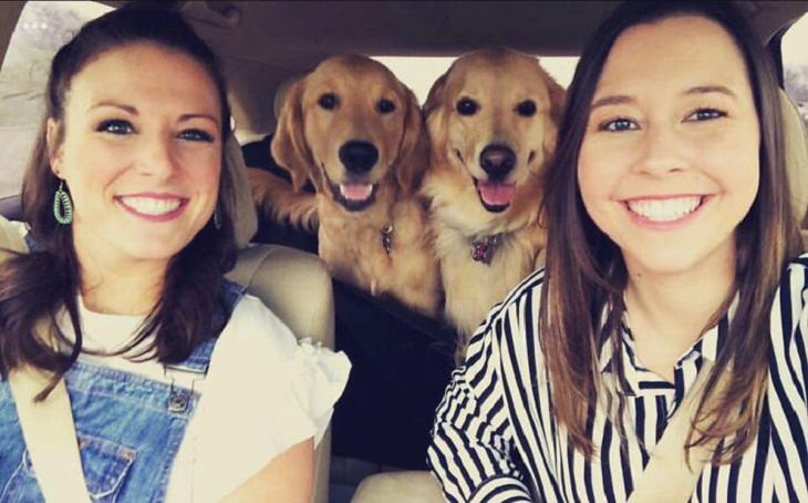 Family Portraits With Dogs, happiness