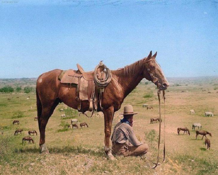 Colorized Historic Pics, horse wrangler