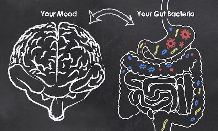 How Probiotics Help Treat Depression and Anxiety, illustration of brain and gut