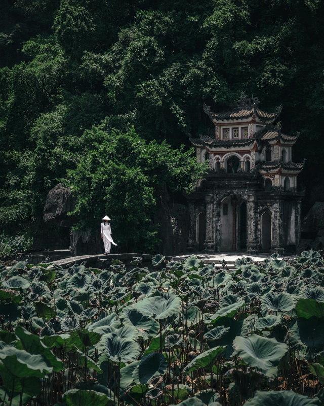 Ryosuke Kosuge photos Vietnam