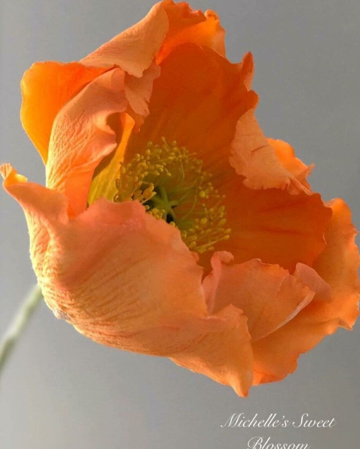 Michelle Nguyen sugar flowers