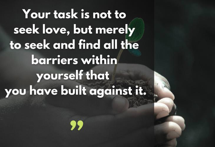 Rumi Quotes, love