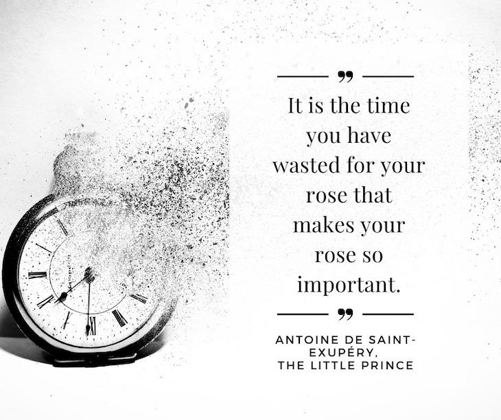 """Time Management Quotes To Inspire You """"It is the time you have wasted for your rose that makes your rose so important"""". – Antoine de Saint-Exupéry, The Little Prince"""