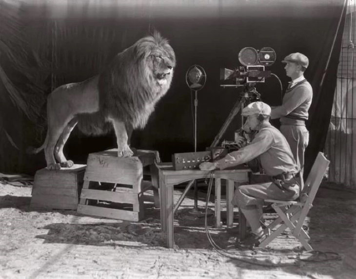 Behind-the-Scene Photos From Movies MGM lion