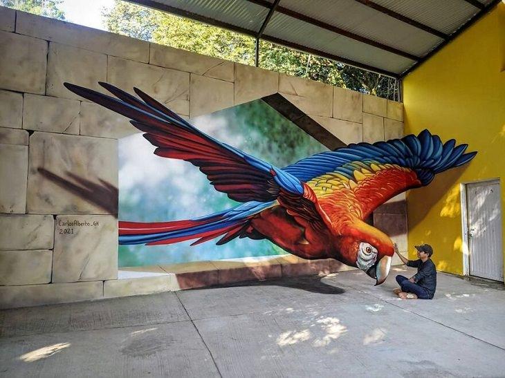 3D Street Art, parrot