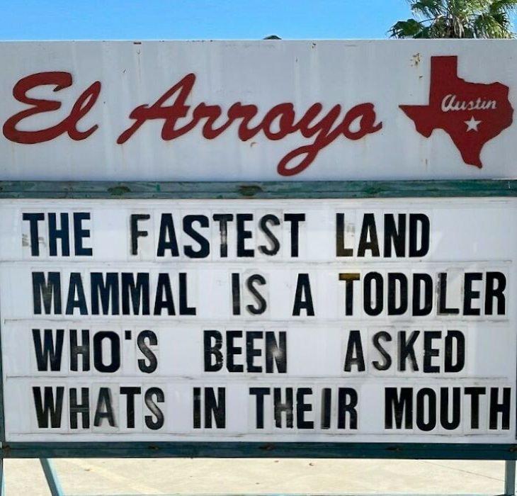 El Arroyo Funny Signs