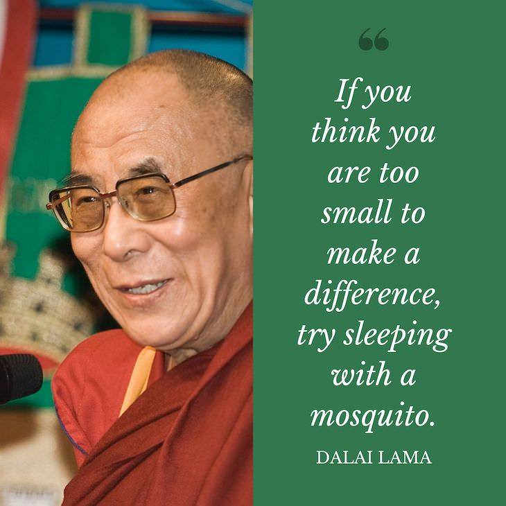 "Humorous Inspirational Quotes by Famous People ""If you think you are too small to make a difference, try sleeping with a mosquito."""