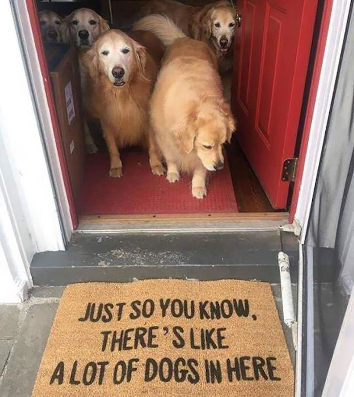 15 Hilariously Creative Doormats many dogs