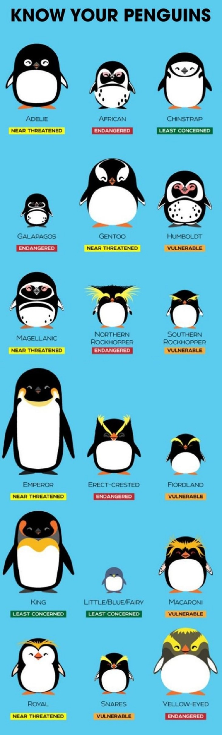 Charts and Guides, penguins
