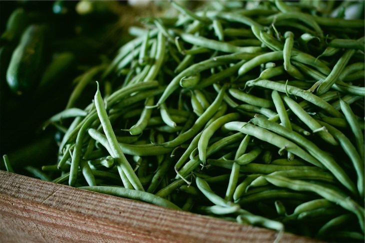 Fastest Growing Vegetables green beans