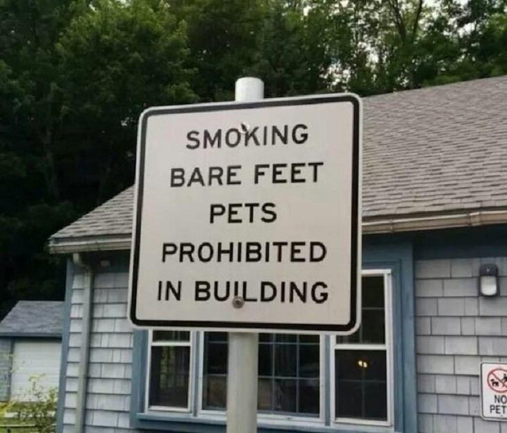 Weird Signs, pets