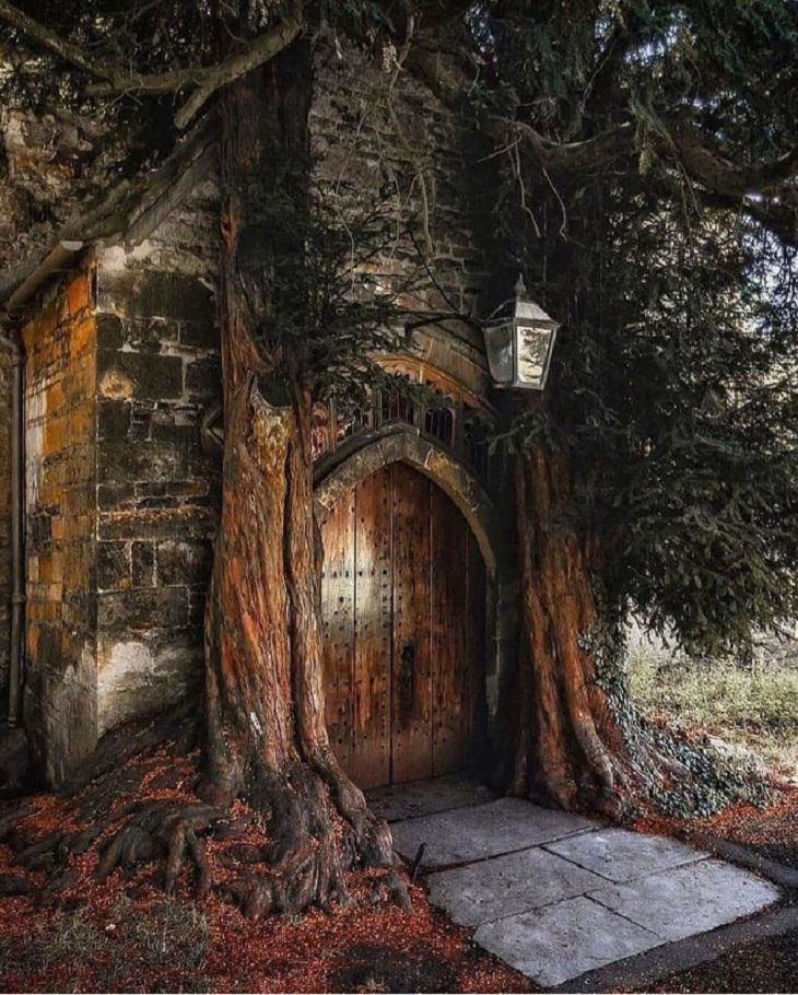 Fairytale-Like Pics, cottage