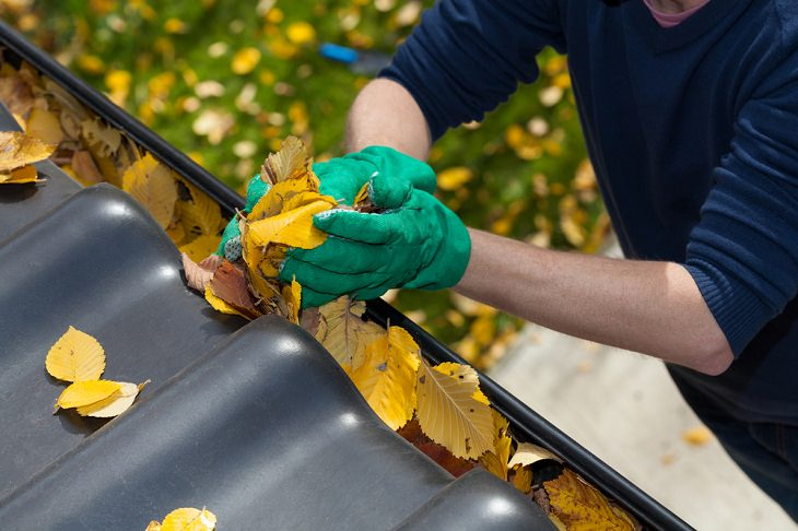 Once-a-Year Cleaning Tasks, House Gutters