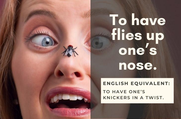 Funny Foreign Idioms Polish Idiom: Mieć muchy w nosie.