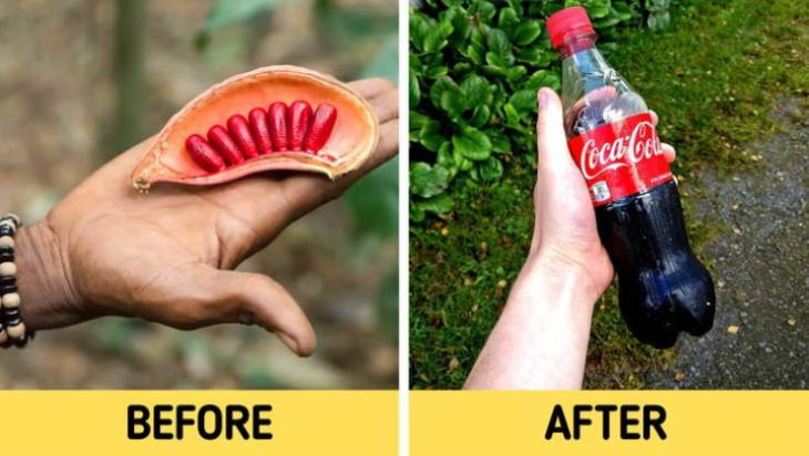 before and after manufacturing Coca-Cola