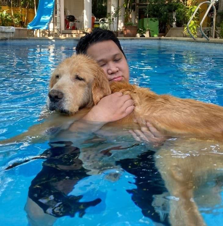 Heartwarming and Happy Moments dog swimming