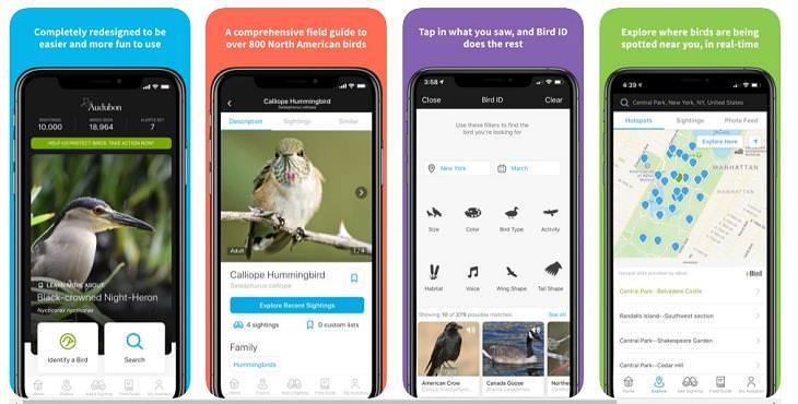 Nature Apps, Audubon Bird Guide