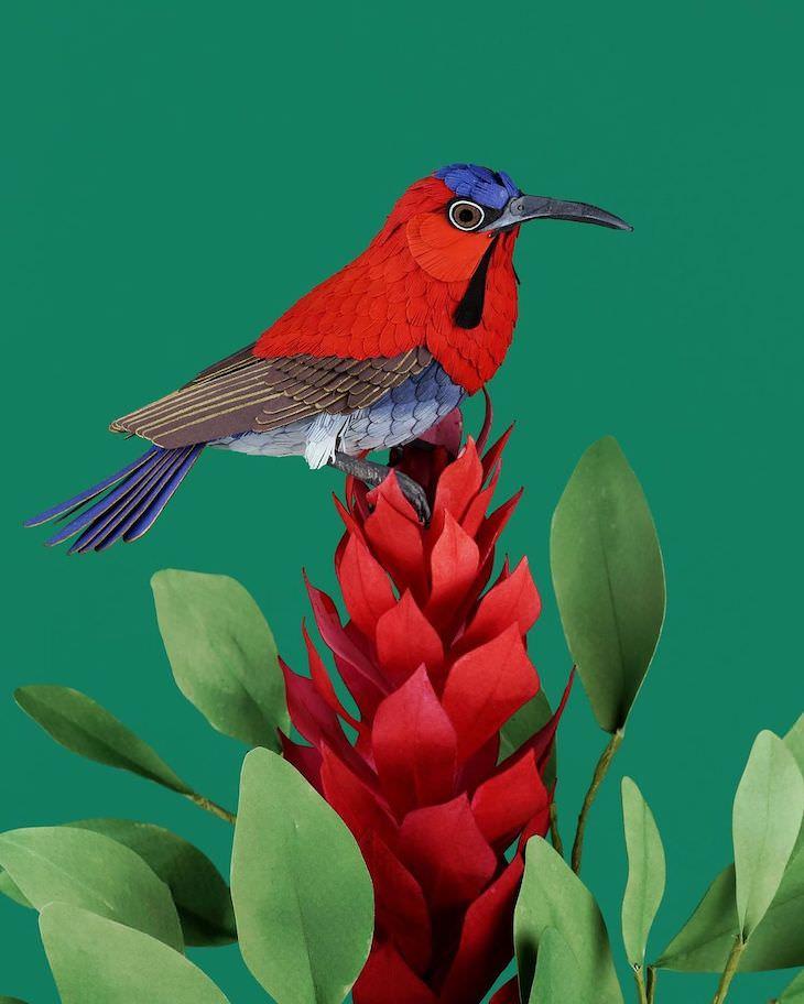 Brilliant Paper Sculptures of Birds & Butterflies by Diana Beltran Herrera Crimson sunbird