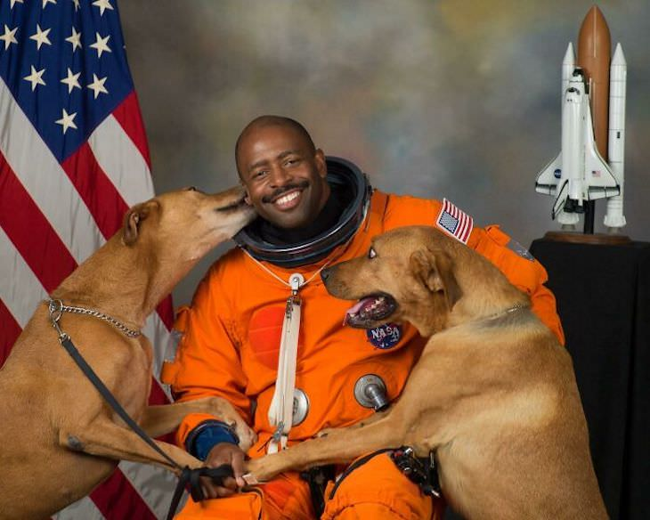 Hilarious Dog Photos That Will Have You in Splits Leland Melvin