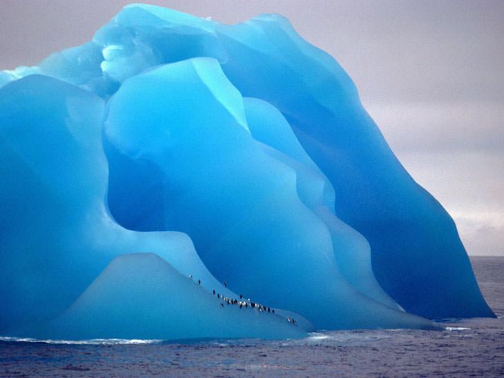 18 Photos Showcasing Earth Is Wonderful iceberg