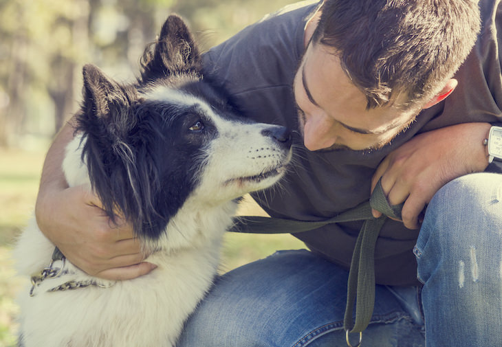 Study: The Effect of Telling Your Dog 'I Love You' dog and owner