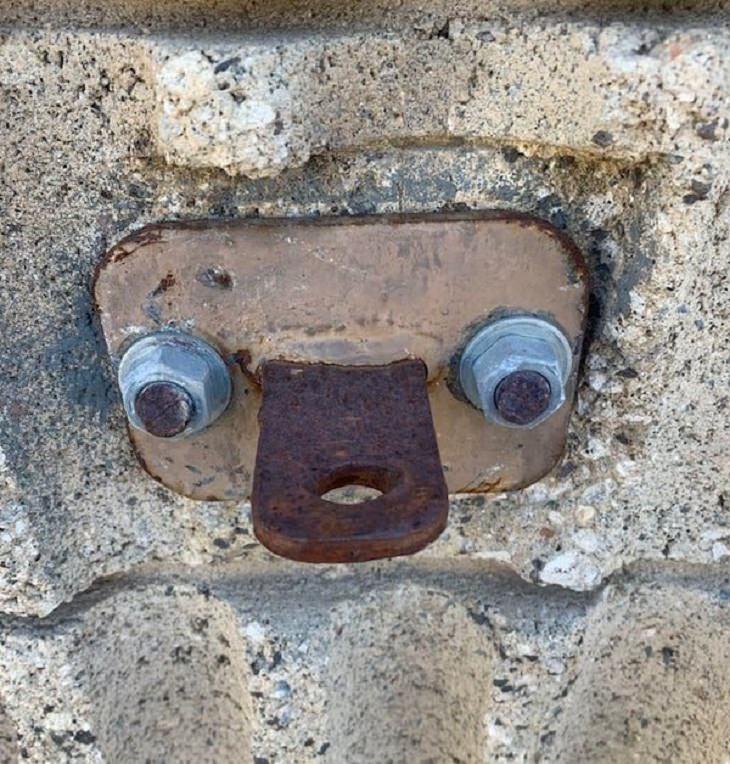 Funny Vandalism, nose