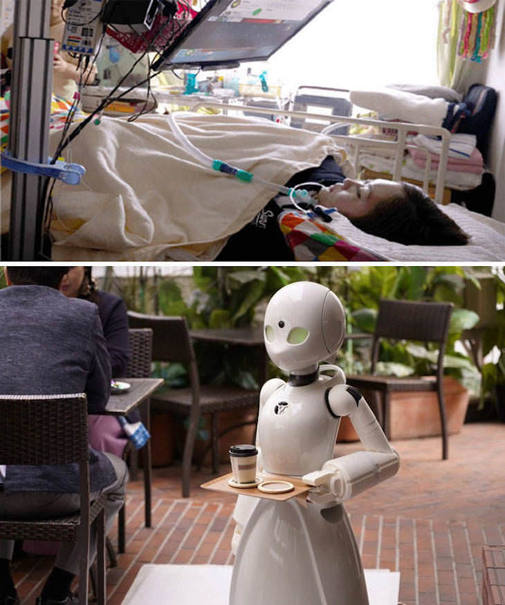 Fascinating Facts and Images of Japan robot servers operated by paralyzed people