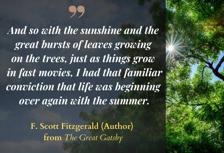 Quotes about Summertime, trees