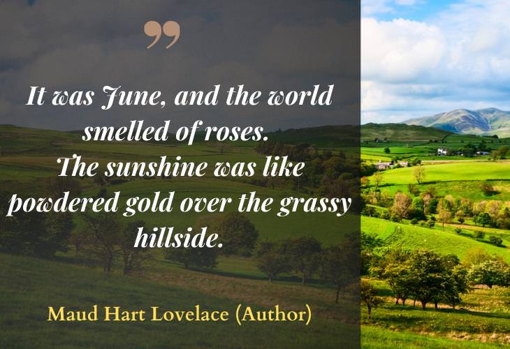 Quotes about Summertime, hillside