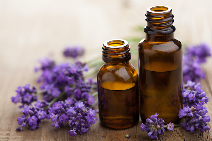 Cooling herbs Lavender
