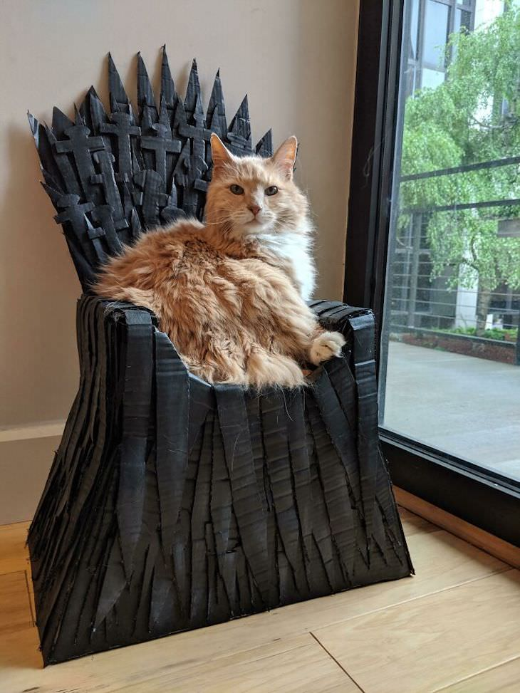 Spoiled Cats Who Live a Life of Luxury throne