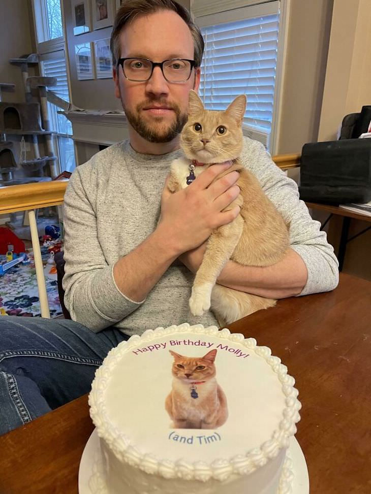 Spoiled Cats Who Live a Life of Luxury birthday cake