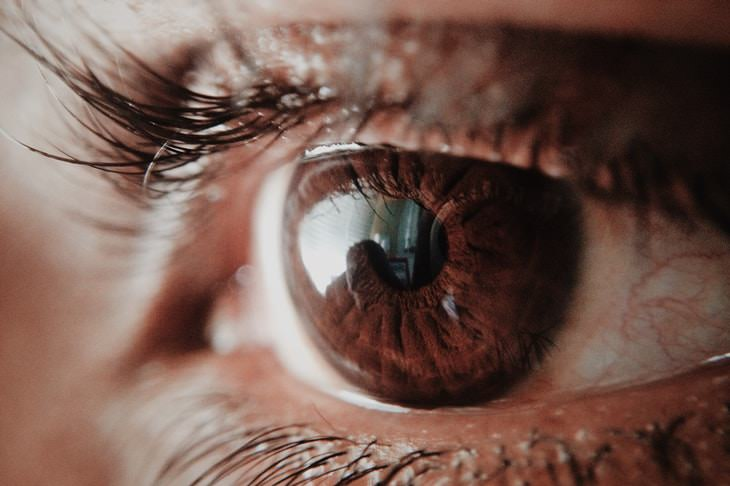 Eye Injection Treats Genetic Blindness eyes