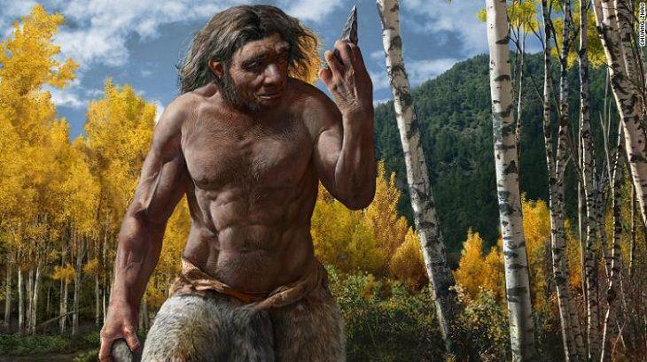 'Dragon Man', Homo longi.