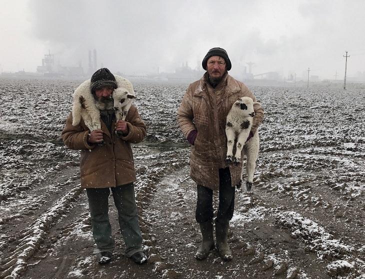 2021 iPhone Photography Awards, Transylvanian Shepherds