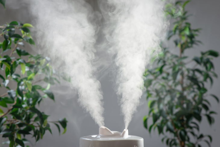 Health Hazards at Home Cool mist humidifier