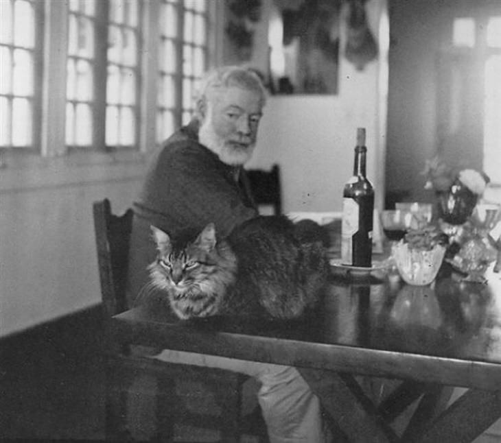 Famous Figures With Their Cats Ernest Hemingway