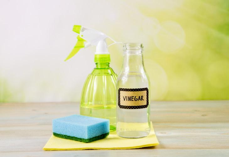 Vinegar DIY Air Freshener DIY Air Freshener