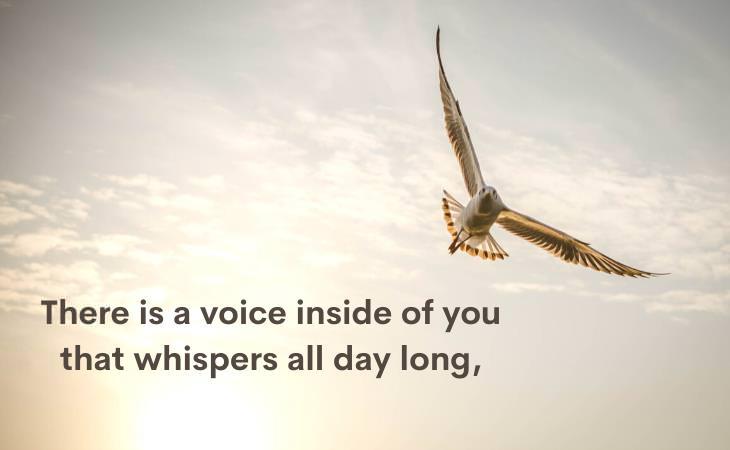 The Voice by ShelSilverstein