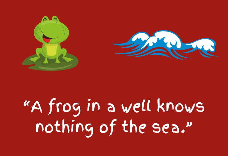 Japanese Proverbs, frog