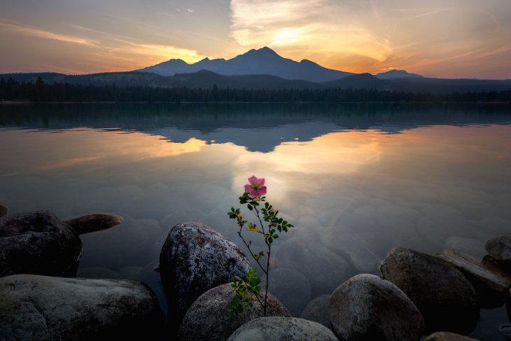 Scenic Mountain Landscapes by Marta Kulesza and Jack Bolshaw Lake Annette, Jasper National Park, Canada